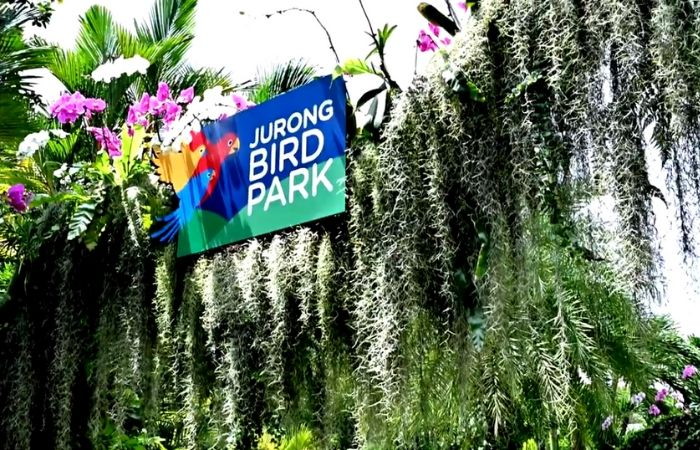 image result for jurong bird park