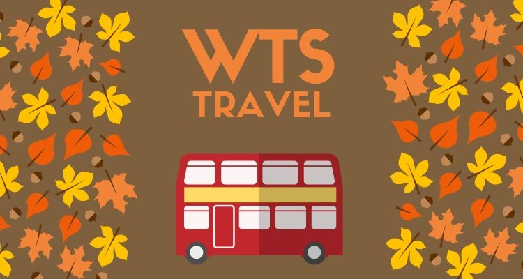 image result for wts travel