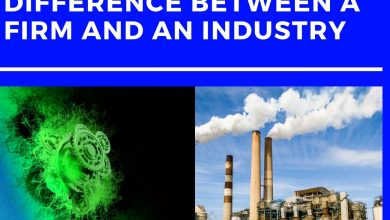 image result for Difference between a Firm and Industry