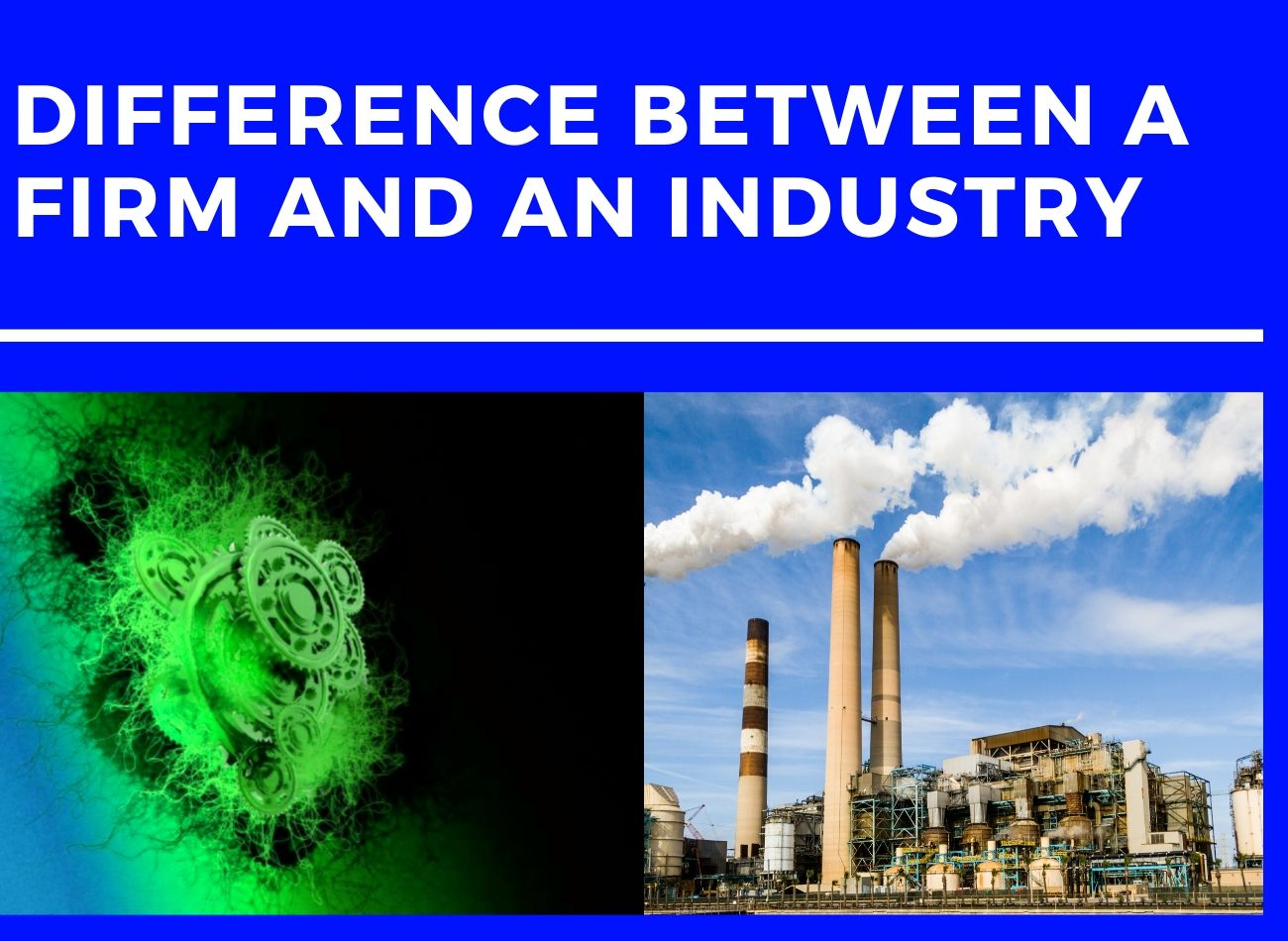 Difference between a Firm and Industry